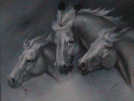 Ghost Riders by Gordon Sage