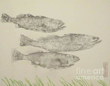 Ghost Trout by Sue Bonnar