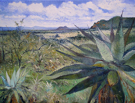 Giant Aloes at Pelegano Botswana 2008  by Enver Larney