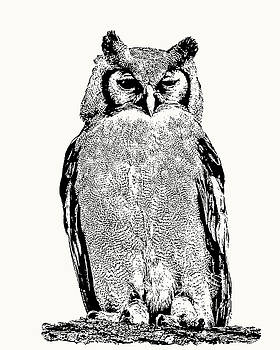 Giant Eagle-owl Perching by Scotch Macaskill