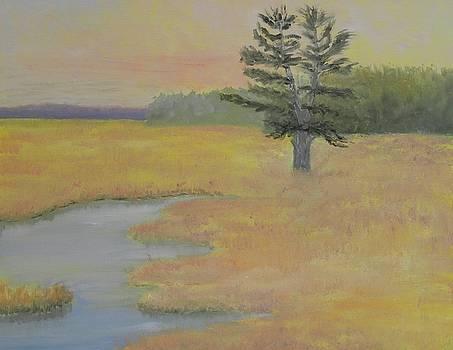 Giant in the Marsh by Scott W White