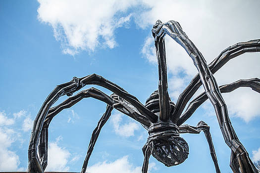 Giant Spiders of Crystal Bridges by Steven Bateson