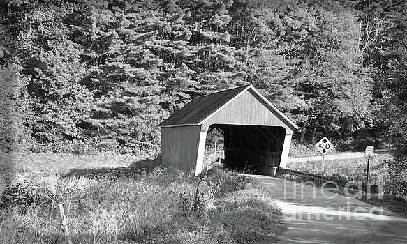 Gifford Covered Bridge Box Camera Effect by Wanda-Lynn Searles
