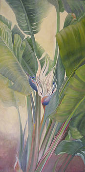 Gigantic White Bird of Paradise No. 2 by Eve Corin