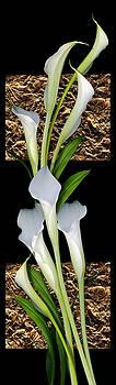 Marsha Tudor - Gilted Lilies