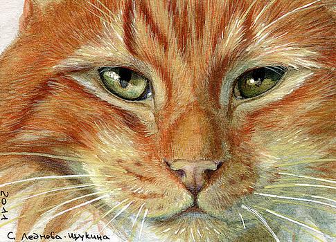 Ginger Cat aceo by Svetlana Ledneva-Schukina
