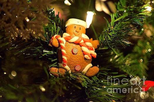 Gingerbread Snowman by Derry Murphy