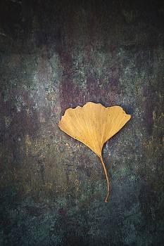 Gingko Leaf by Maria Heyens