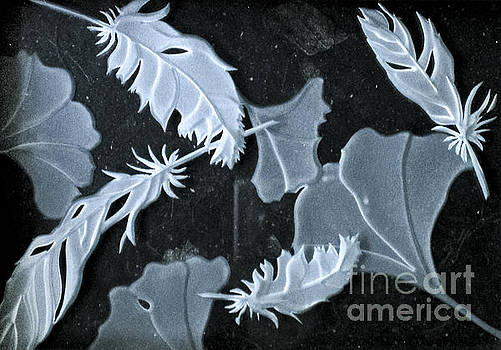 Ginko Leaves and Feathers by Alone Larsen