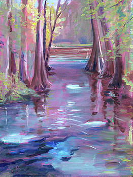 Ginnie Springs Run by Stacey Breheny