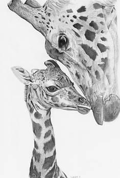 Giraffe Love by Sandra Weiner