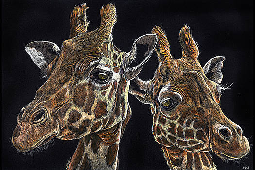 Giraffe Pair by William Underwood