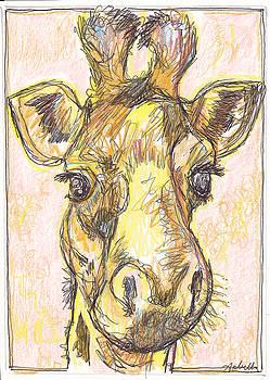 Giraffe Postcard by Michele Hollister - for Nancy Asbell