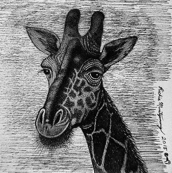 Giraffe  by Richie Montgomery