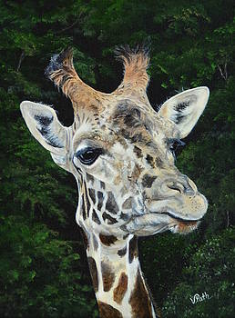 Giraffe by Vicky Path
