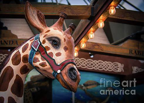 GiraffeCarousel by Lisa L Silva