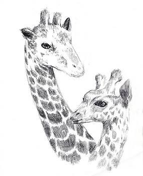 Giraffes by Alice Chen