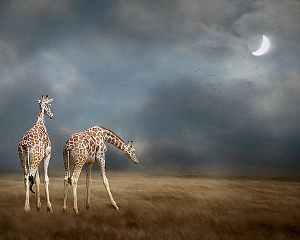 Giraffes in the Moonlight by Rebecca Cozart