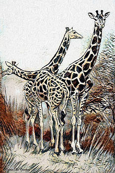Giraffes by Pennie McCracken