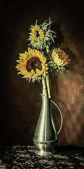 Girasole by Jerri Moon Cantone