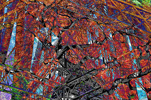 Mary Clanahan - Girder Treed Abstract