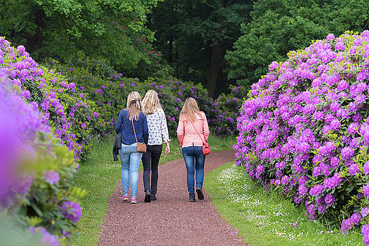 Girls In Rhododendron Park by Hans Engbers