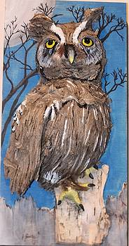 Give A Hoot by Jody Neugebauer
