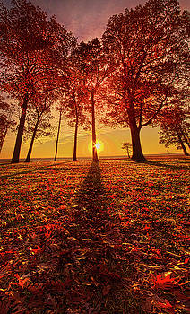 Giving Thanks by Phil Koch