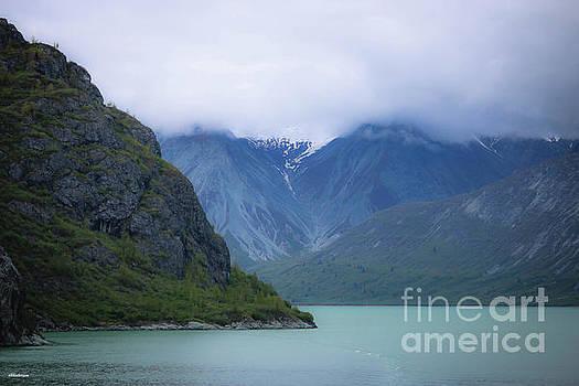 Glacier Bay Alaska Four by Veronica Batterson