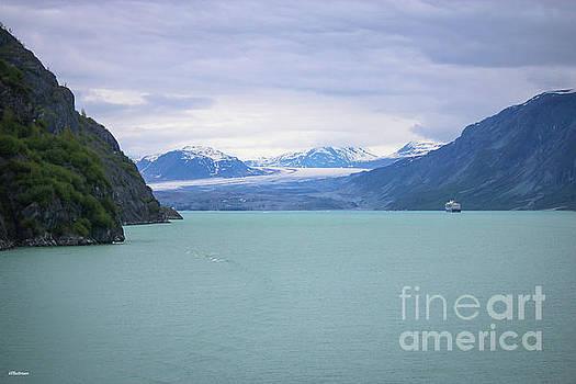 Glacier Bay Alaska Three by Veronica Batterson