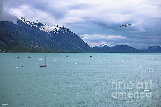 Glacier Bay Alaska Two by Veronica Batterson