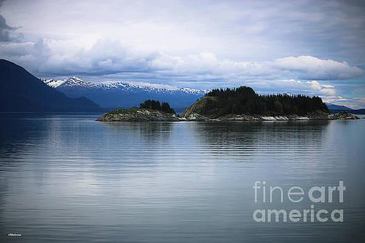Glacier Bay Alaska by Veronica Batterson