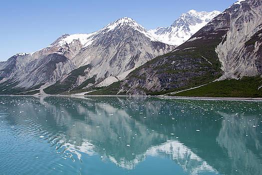 Ramunas Bruzas - Glacier Bay Reflections