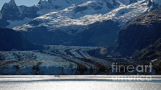 Connie Fox - Glacier Bay Seascapes. Lamplugh Glacier