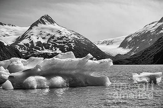 Chuck Kuhn - Glacier BW Porter Alaska