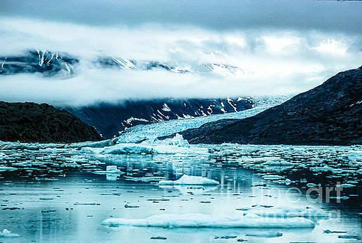 Glacier Coming Down Mountain into Glacier Bay _16aT_G by Doug Berry