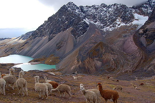 Glacier Lakes High Andes by Catherine Amsden