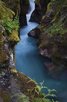 Glacier National Park  by Kevin Blackburn