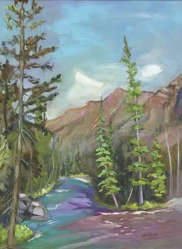Glacier Stream by Eve  Wheeler