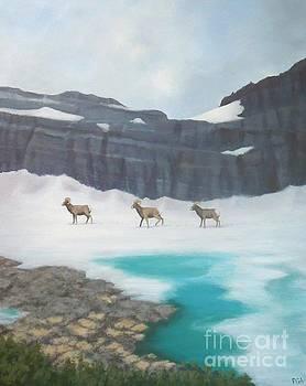 Glacier's Bighorn Hikers by Phyllis Andrews