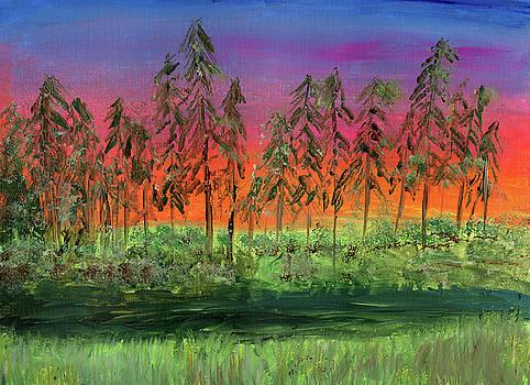 Glades Sunset by Neliza Drew