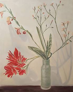 Glad's and Canna's by Isabel Honkonen