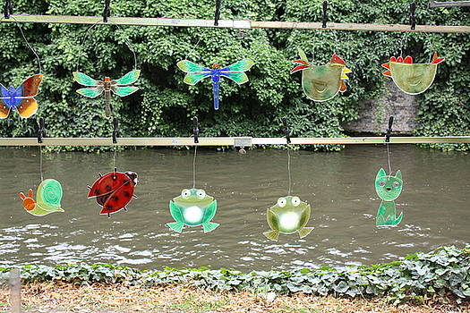 Glass Animals by Peter Gaffey