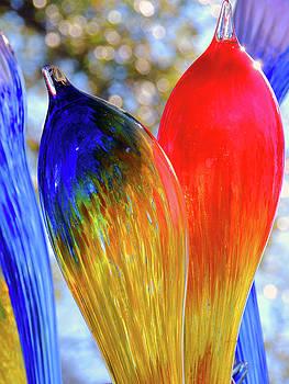 Glass Art Two by Krin Van Tatenhove