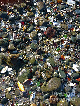 Glass Beach in Eureka California by Gregory Dyer