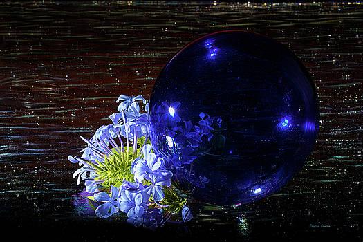 Glass Bubble by Phyllis Denton