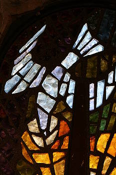 Glass Dove by Marjohn Riney