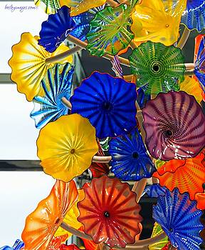 Glass Flower Art by William Bosley