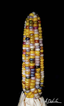 Glass Gem Corn by Mark Dahmke