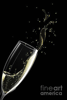 Glass of Champagne by Sandra Hoefer